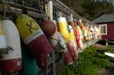 [Colorful buoys]