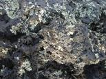 [Close up of a lava rock]
