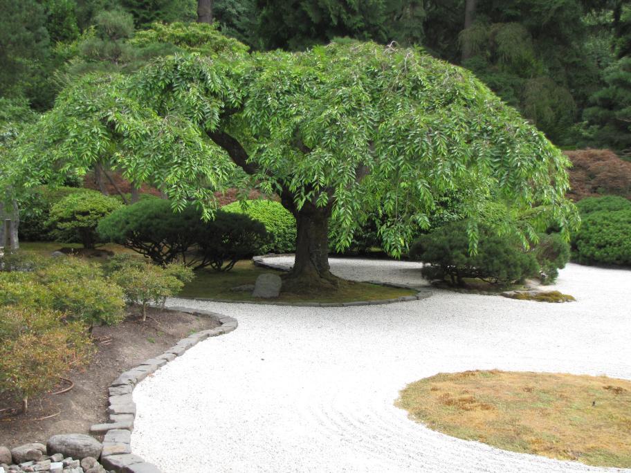 Charmant [Japanese Sand Garden]