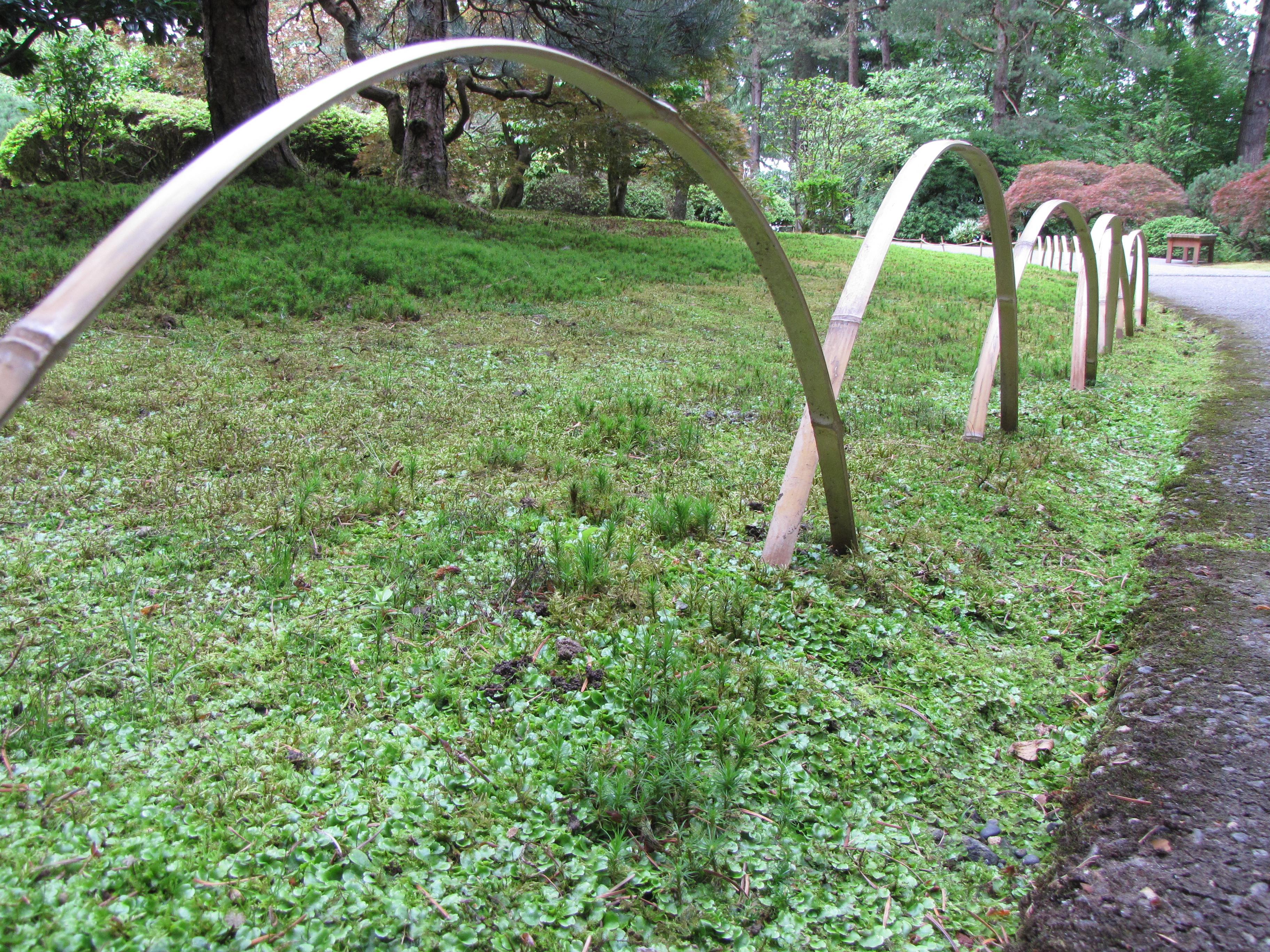Portland Gardens 2010